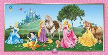 Plagát Disney Princezné