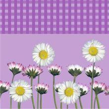 Servítky Daisy fialové