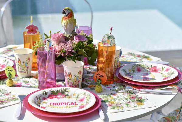 Exotická párty, letná párty s papagájmi