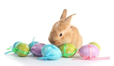 Húsvéti dekoráció, Húsvéti kellékek