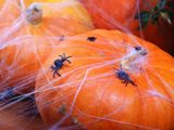 Plastoví pavúci
