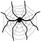 Pavúky a pavučiny