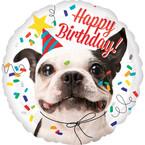 Psie narodeniny