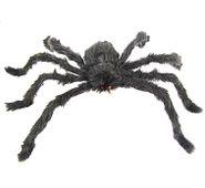 Chlpatý pavúk čierny