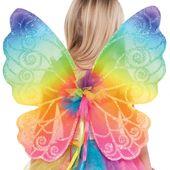 Kúzelné krídla rainbow
