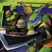 Servítky Ninja korytnačky